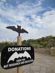 Bat Donations