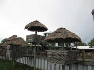 The Conch House