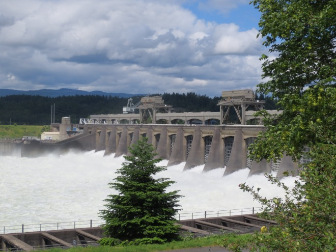 The view from the top of Bonneville Dam. It's a lot smaller than the Hoover Dam in Vegas or the Grand Coulee Dam in Washington, but it wins the prize for most interesting and beautiful  in appearance.