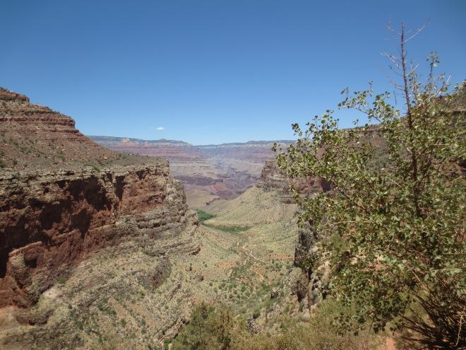 Canyon Vista 5