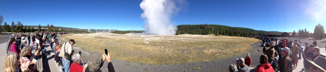 Old Faithful Panorama