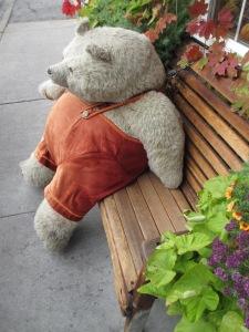 Bear on Bench