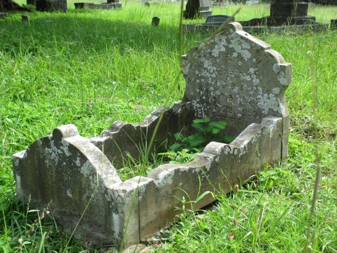 Cradle Grave