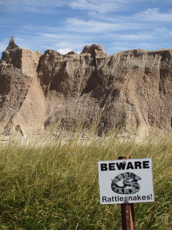 Beware Rattlesnakes