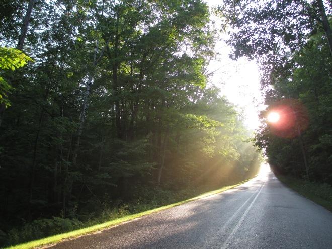 Sunshine on Road Landscape
